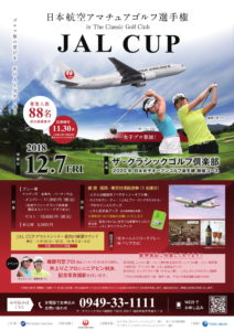 JAL フライヤー-1